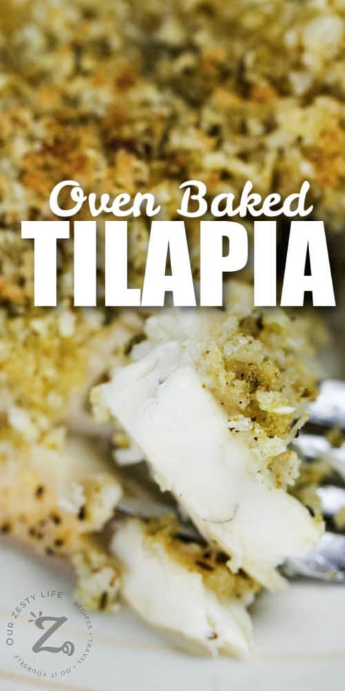 close up of Baked Tilapia with writing