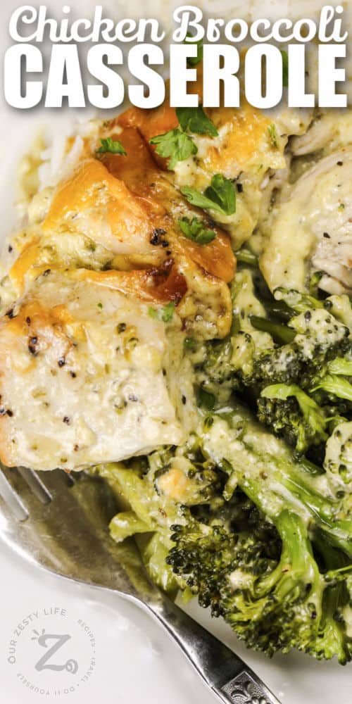 Chicken Broccoli Bake on a plate with a fork and writing