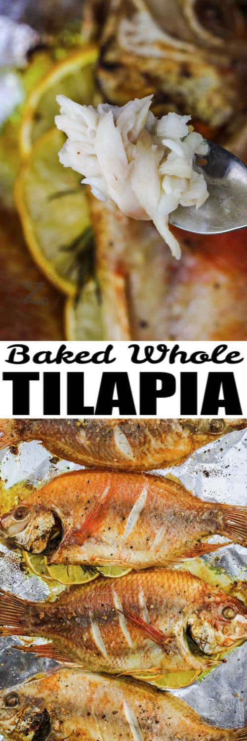 Baked Whole Fish on the baking sheet and close up on a fork with writing