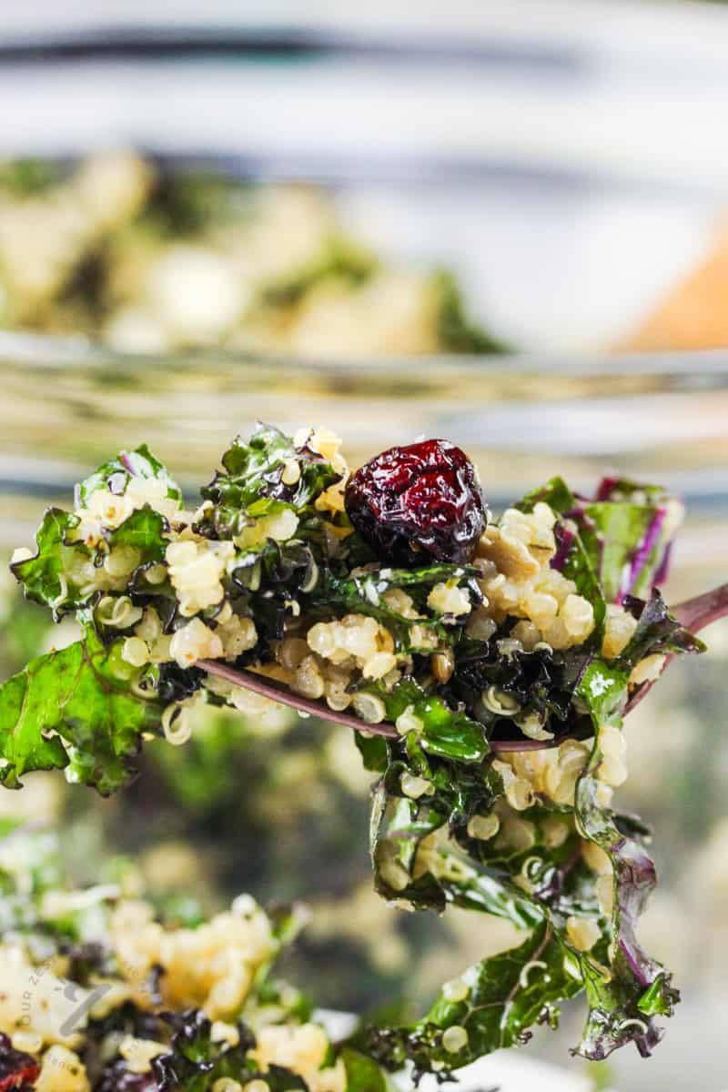 close up of Kale Salad on a fork