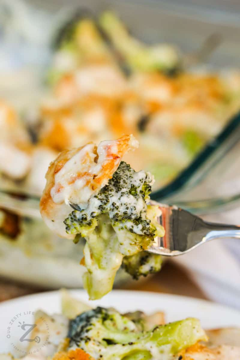 close up of Broccoli Chicken Divan on a fork