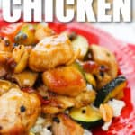close up of plated Kung Pao Chicken with writing