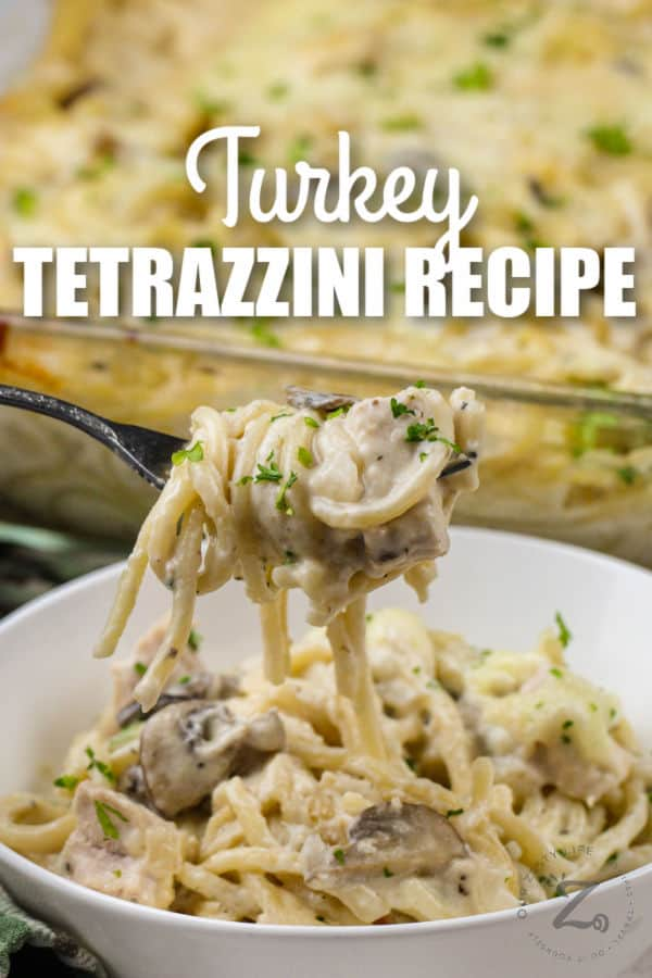 bowl of Turkey Tetrazzini and fork full with a title